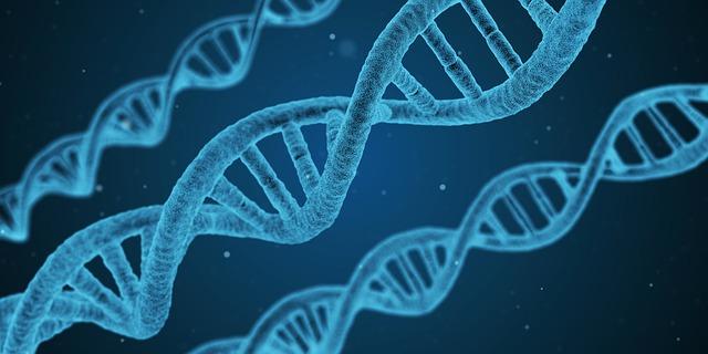 Trouble de l'Anxiété et génétique…